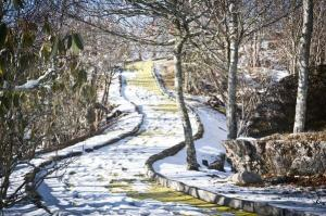 Abandoned Yellow Brick Road Snow
