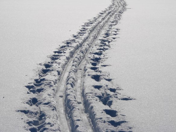 cross-country_skiing_tracks